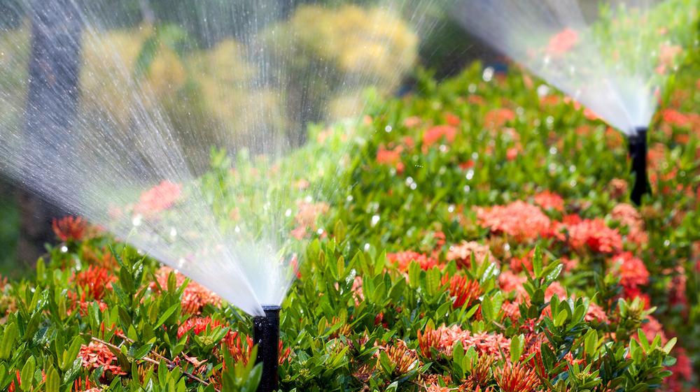 Spring Turn On Island Irrigation Sprinkler Service