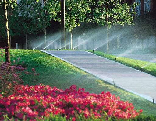 Commercial Irrigation Island Irrigation